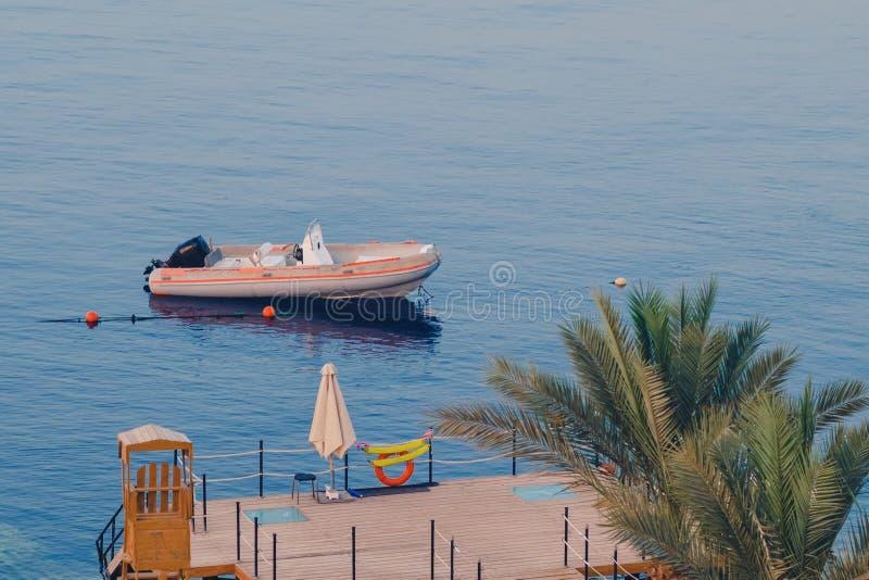 棕榈树、码头和被停泊的小船在海 免版税库存图片