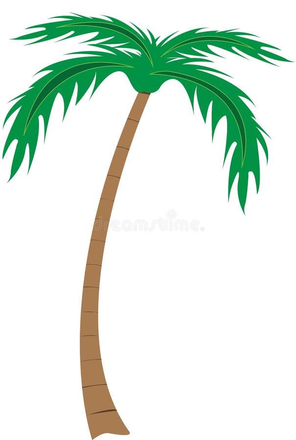 棕榈树例证 库存例证