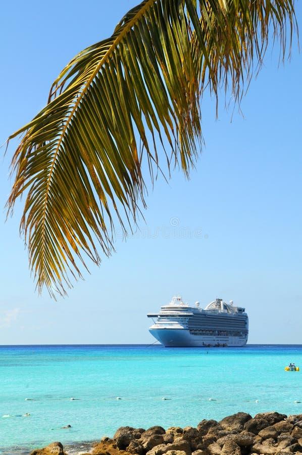 棕榈树分支在加勒比 图库摄影