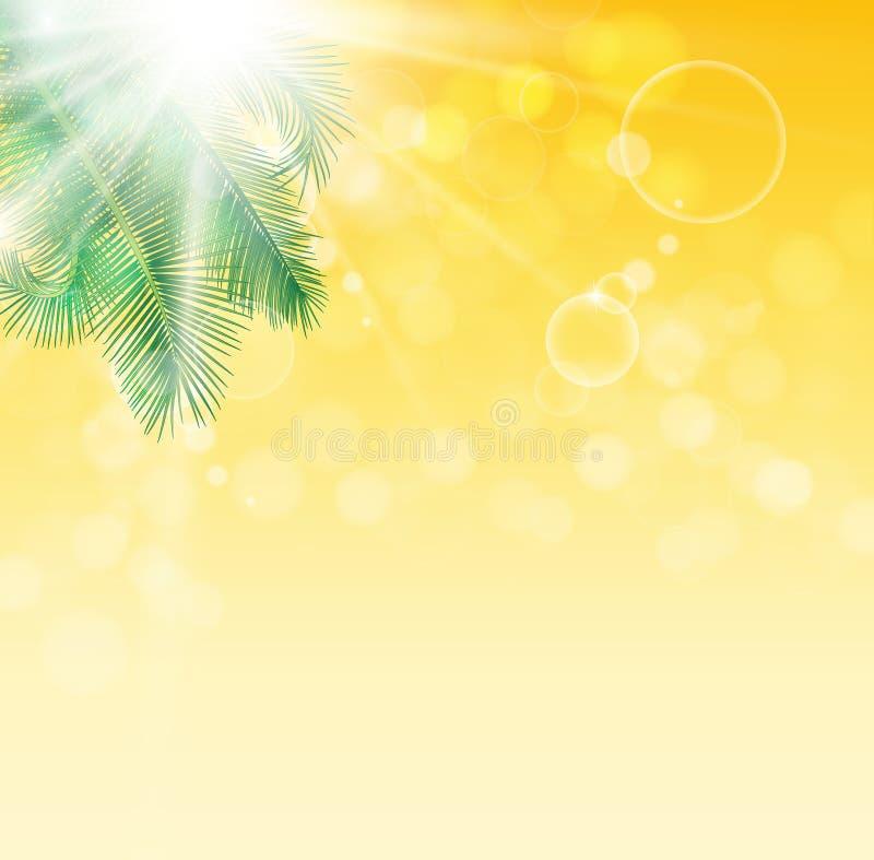 棕榈树叶子在背景的 免版税库存图片
