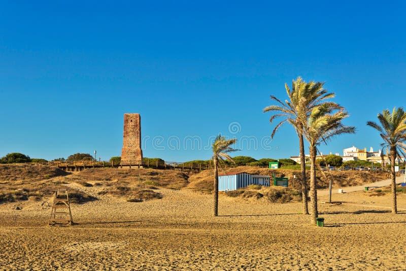 棕榈树和古老石塔在Cabopino海滩 马尔韦利亚海岸线  免版税库存照片