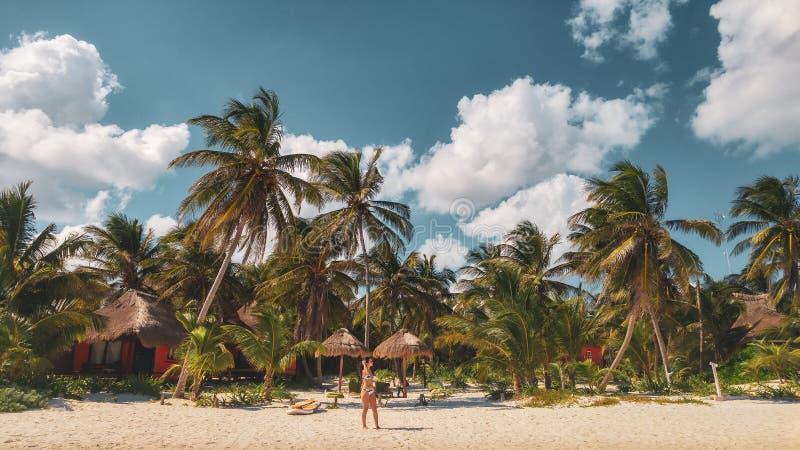 棕榈树和女孩在Candaraman海岛上在巴拉巴克海峡 免版税库存照片