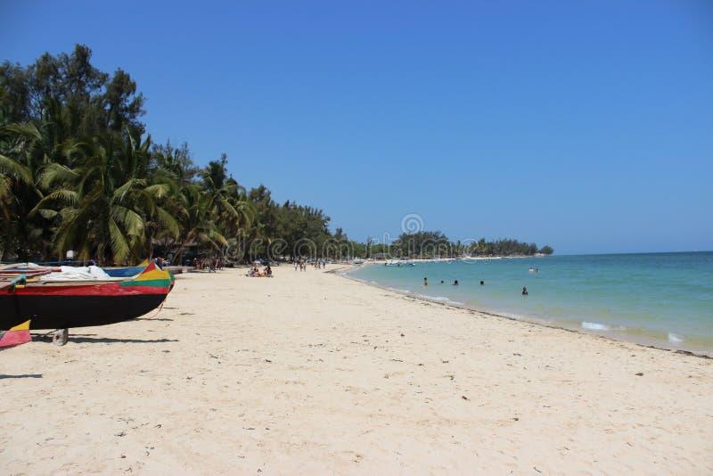 棕榈树和沙子在Ifaty,马达加斯加海滩  库存照片