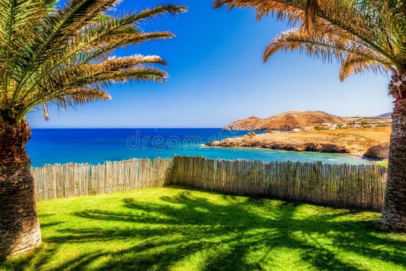 棕榈树和海在克利特海岛 免版税库存图片
