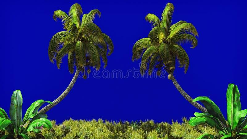棕榈树和热带植物分支风的在蓝色屏幕上 背景美好的例证夏天向量 3d翻译 免版税库存图片