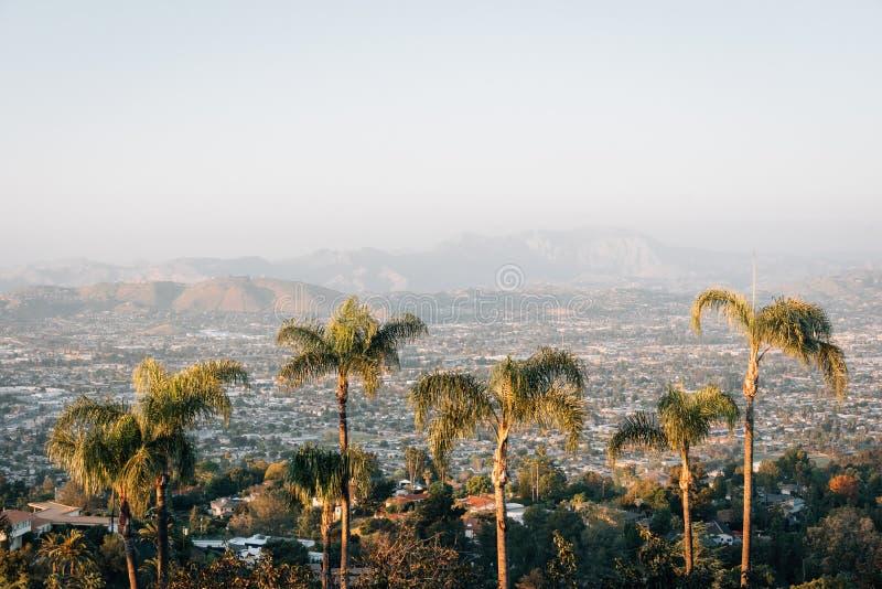 棕榈树和视图从登上螺旋,在拉梅萨,在圣迭戈附近,加利福尼亚 免版税图库摄影