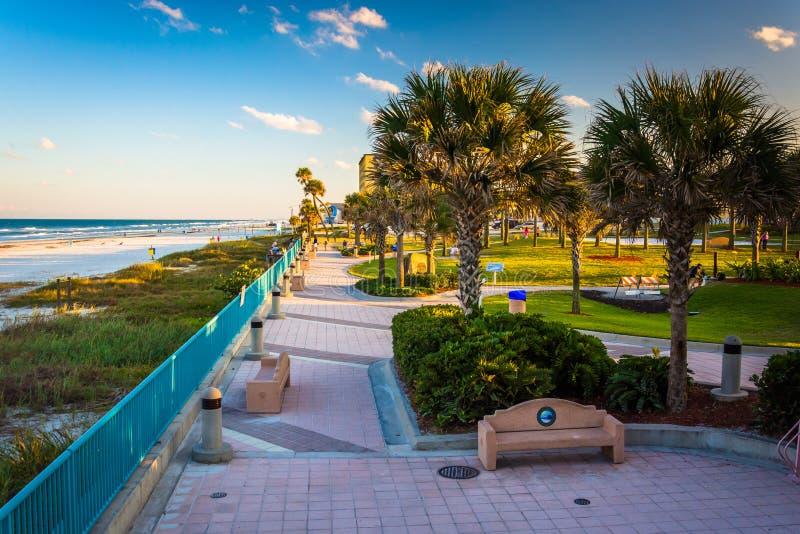 棕榈树和走道沿海滩在Daytona海滩,佛罗里达 免版税库存照片