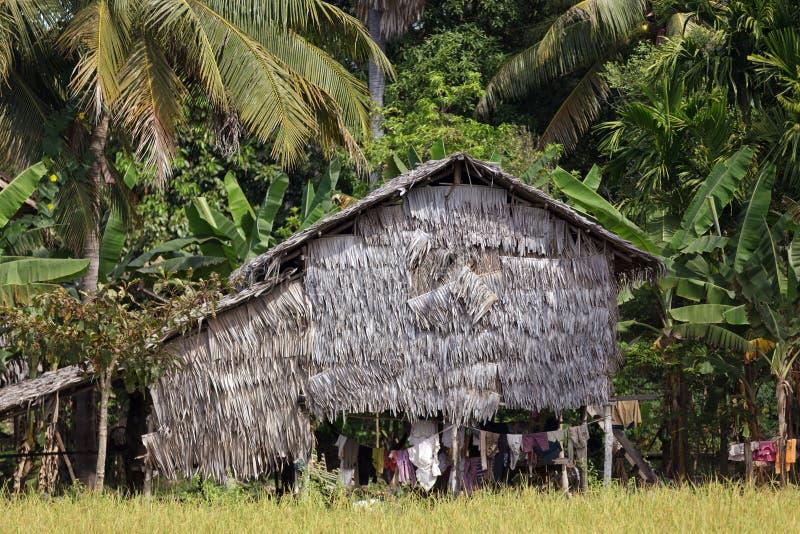 棕榈树房子 免版税库存照片