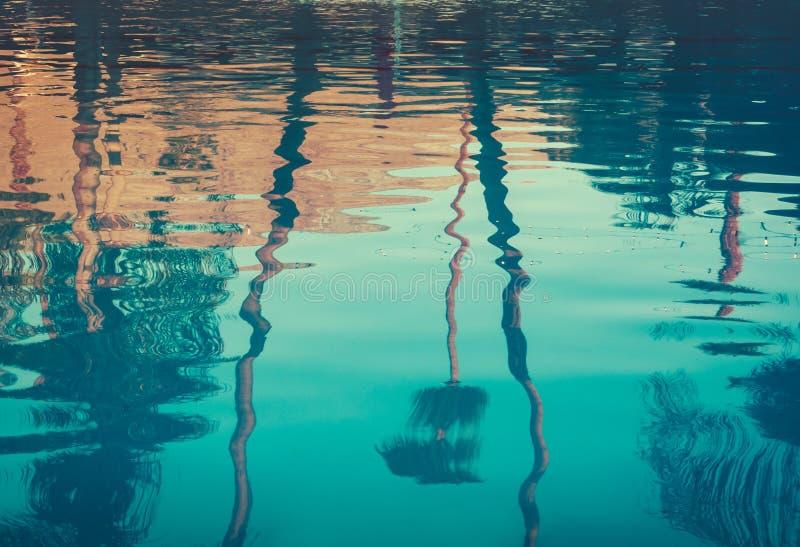 棕榈树的背景图象在游泳池反映的 库存图片