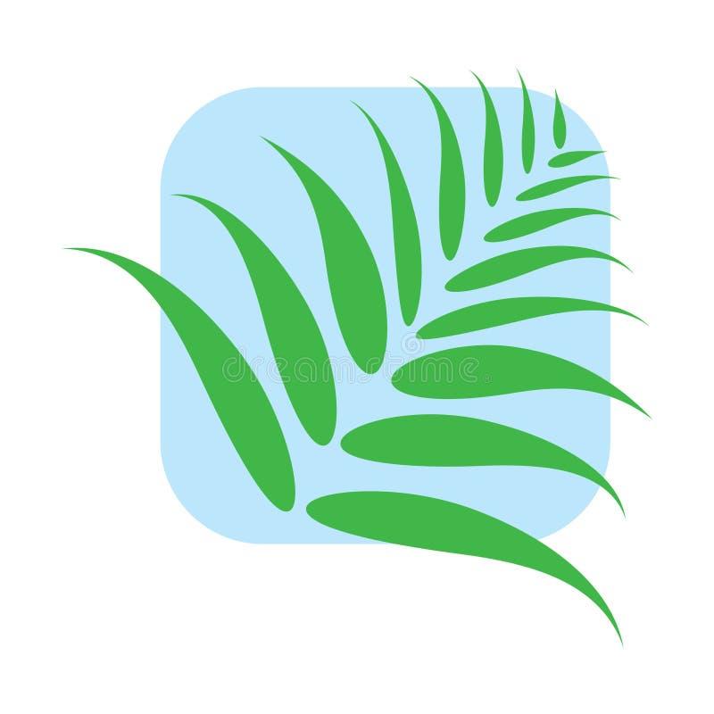 棕榈树绿色叶子  向量例证