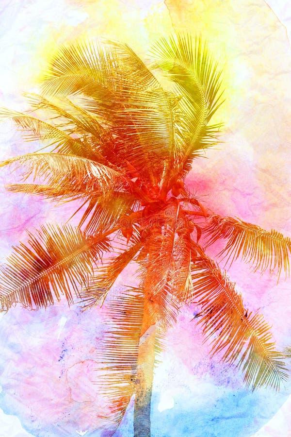 棕榈树美丽的水彩的减速火箭的照片  向量例证