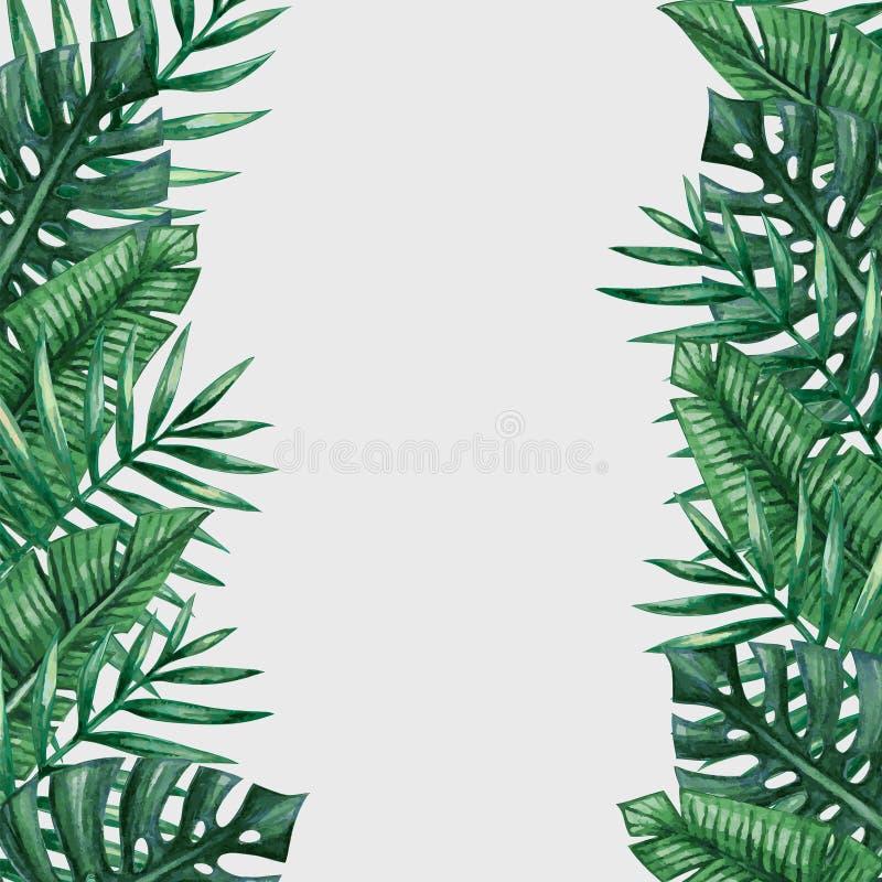 棕榈树离开背景模板 向量例证