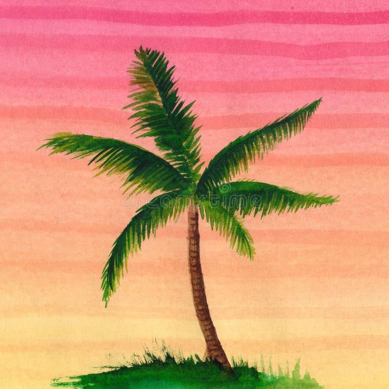 棕榈树 皇族释放例证