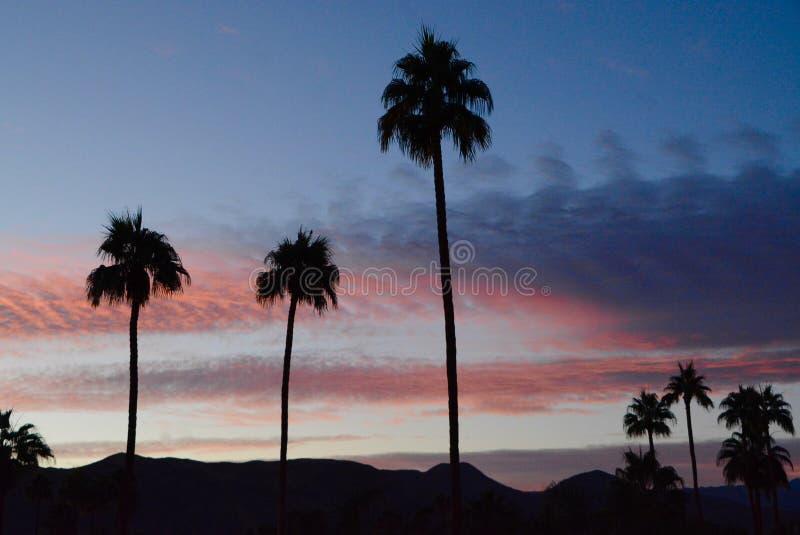 棕榈泉日出 免版税图库摄影
