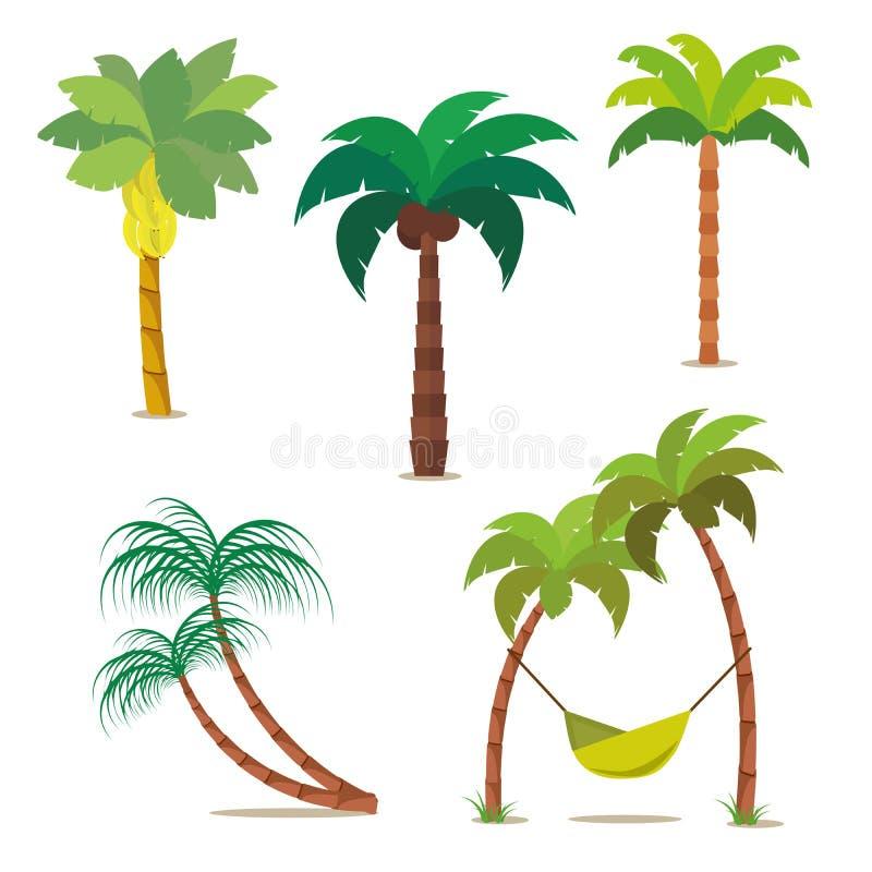 棕榈集合 您的设计或项目的热带树 背景查出的白色 库存例证