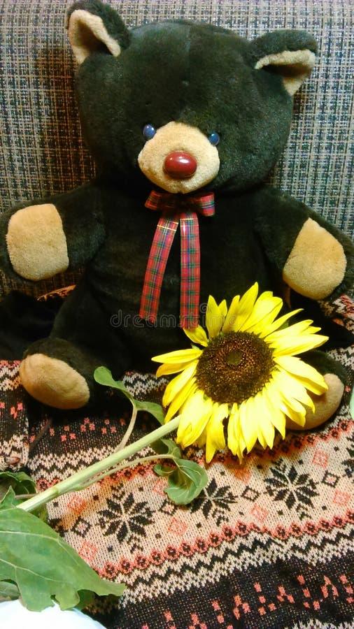 棕熊玩偶用向日葵 免版税库存图片