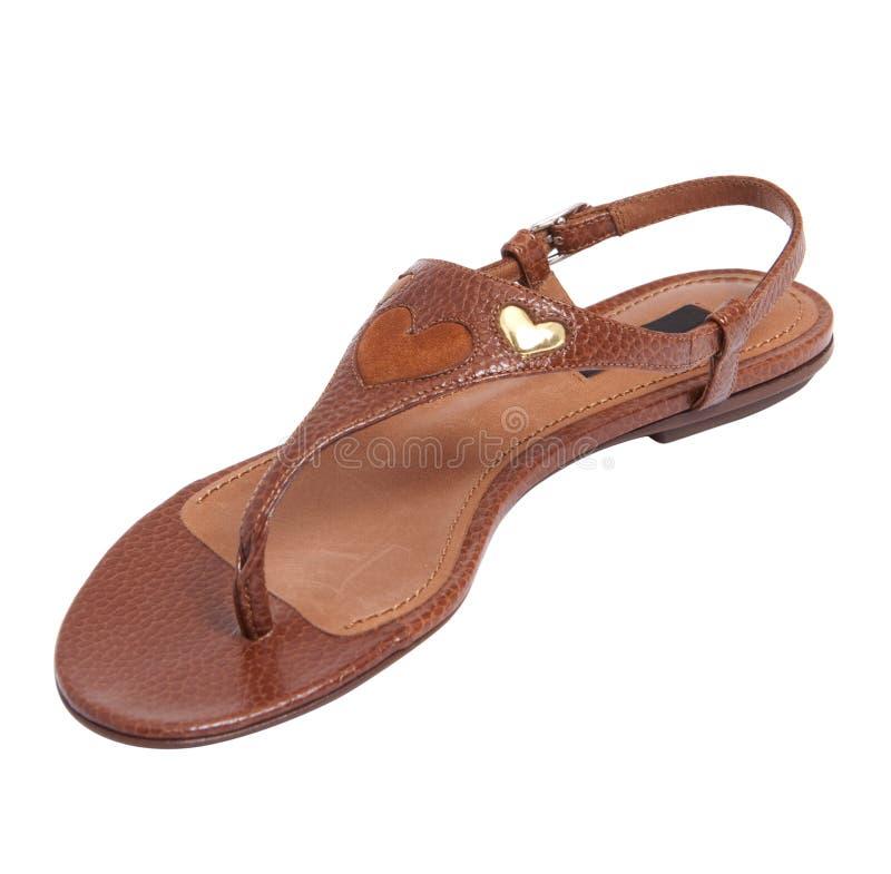 棕色凉鞋妇女 免版税库存图片