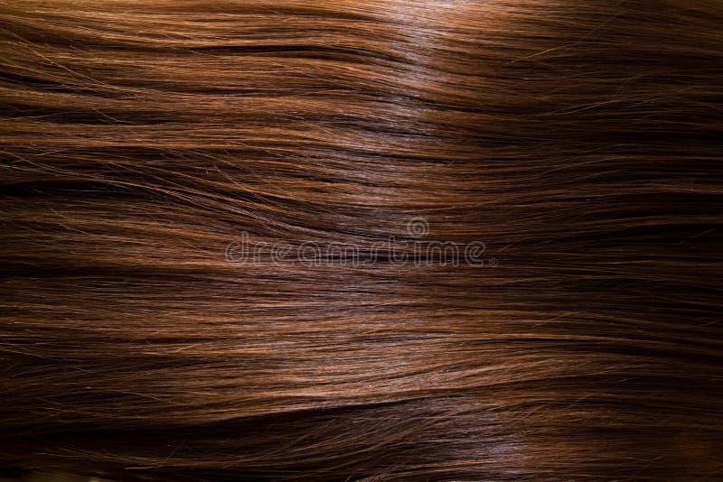 棕色头发 免版税库存照片
