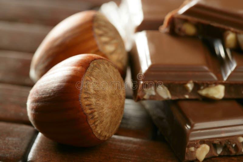 棕色巧克力环境榛子 库存图片