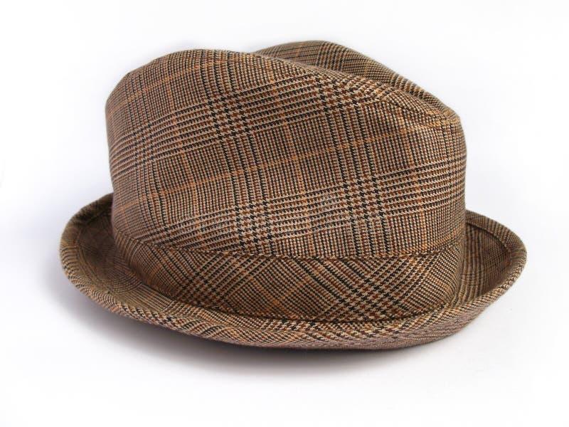 棕色帽子格子花呢披肩冬天 免版税库存照片
