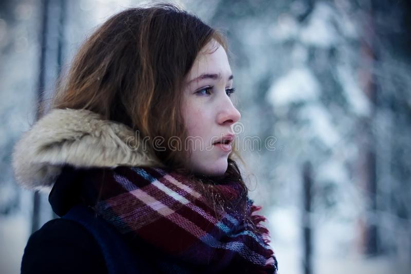 棕色毛发的女孩在冬天森林里玫瑰色从寒冷 库存图片