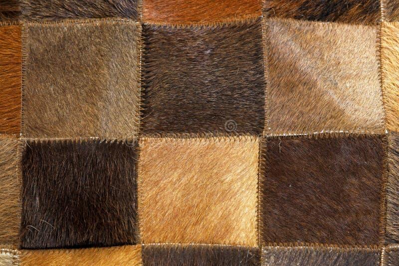 棕色毛皮 免版税库存照片