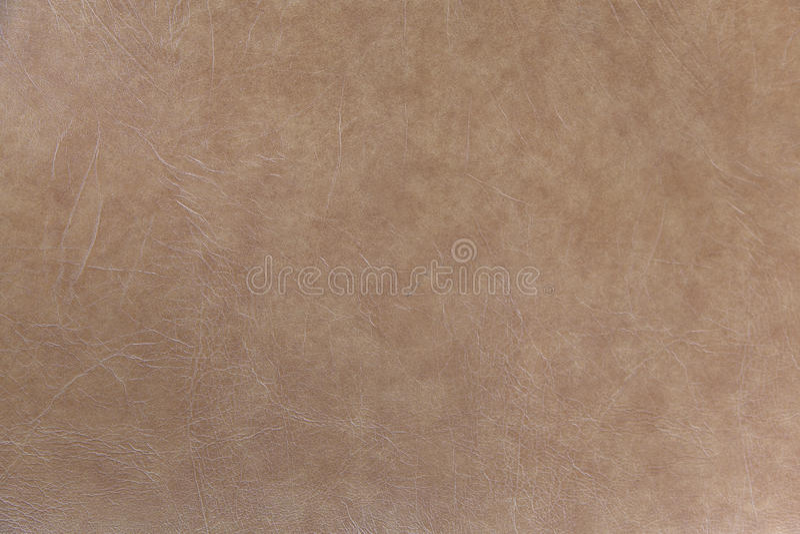 棕色皮革沙发 免版税库存照片