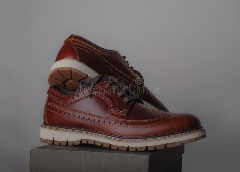 棕色皮鞋 免版税库存图片