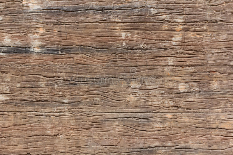 棕色老纹理木头 免版税库存图片