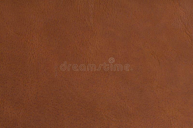 棕色自然皮革纹理在宏指令的 免版税库存照片