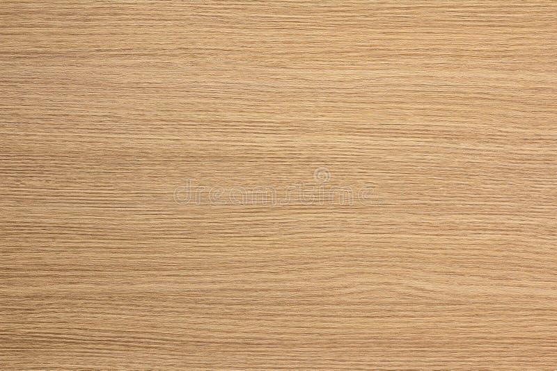 棕色轻的纹理木头 库存照片