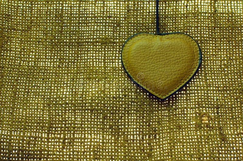 棕色重点皮革物质自然老 免版税库存照片