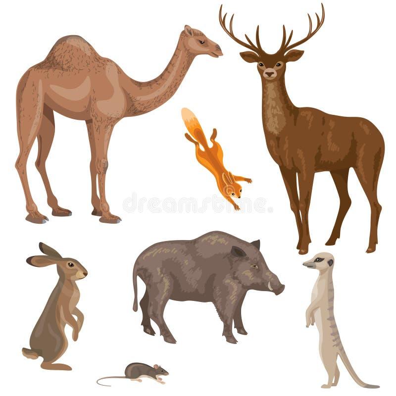 森林、沙漠和干草原区域动物  库存例证