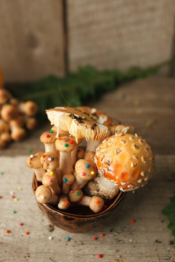 森林、童话&神奇生物概念- poisonus在有糖果店装饰的杯子采蘑菇在木桌,魔术上 免版税库存照片