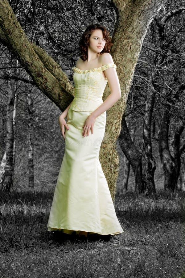 森林公主春天 库存图片