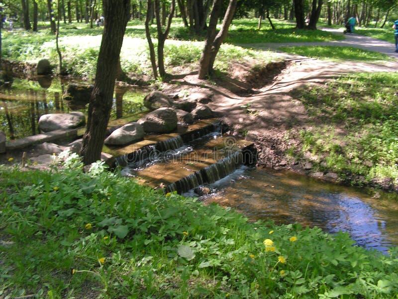 16 森林公园'DROZDY'在米斯克白俄罗斯 库存图片