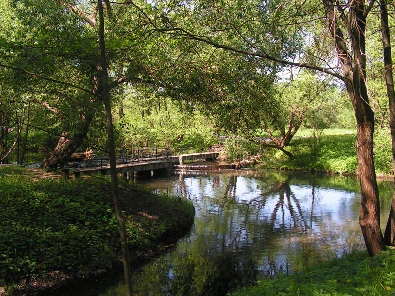 17 森林公园'DROZDY'在米斯克白俄罗斯 库存图片