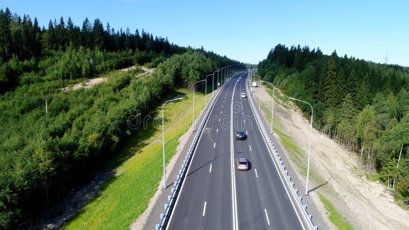 森林公路在北部的一个夏日在夏天 免版税图库摄影