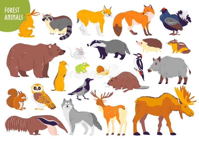 森林动物和鸟的传染媒介汇集:熊,狐狸,野兔,在白色背景隔绝的猫头鹰 平的手拉的样式 皇族释放例证