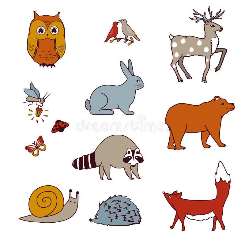 森林动物设置了与熊、猫头鹰、鸟、鹿、野兔、浣熊、蜗牛、狐狸和萤火虫 库存例证
