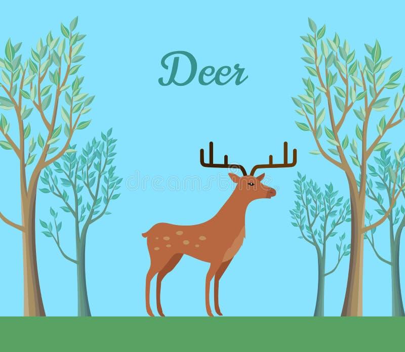森林反刍动物哺乳动物的雷德迪尔 库存例证