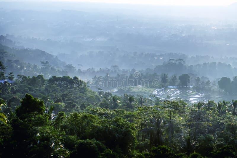 森林和农场的看法从一个高地方 图库摄影