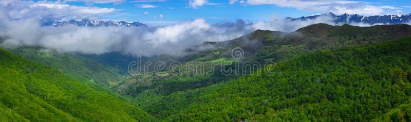 森林和山从Piedrasluengas观点在丰特斯Carrionas自然公园  图库摄影
