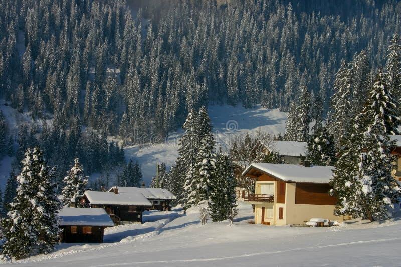 森林和村庄一个晴朗的积雪的风景在贝阿滕贝格山腰村庄在瑞士 库存照片
