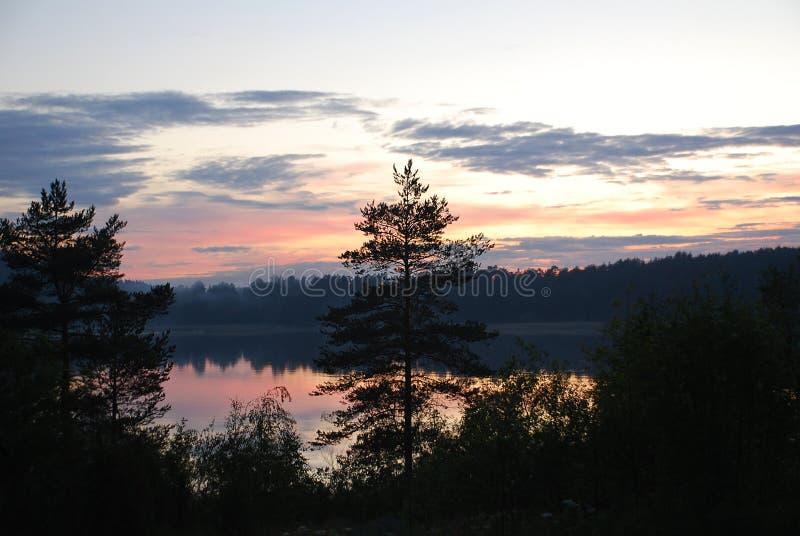 森林和河在天空下 库存照片