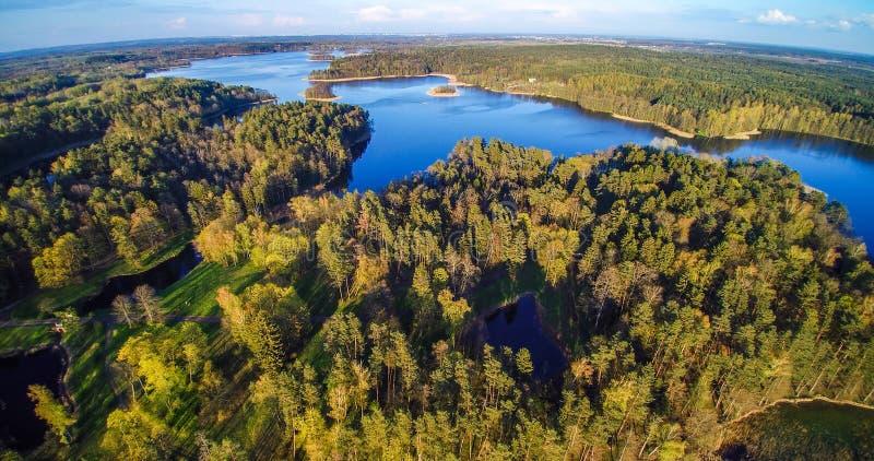 森林和湖从鸟的景色 免版税图库摄影