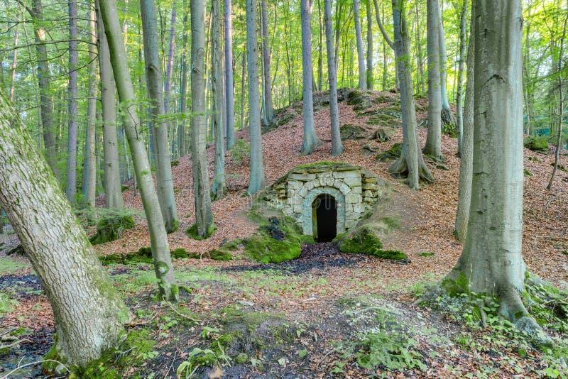 森林土牢 免版税库存照片
