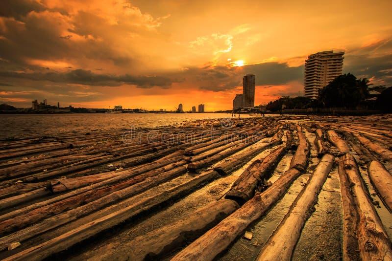 森林在与日落天空的水中 免版税库存照片