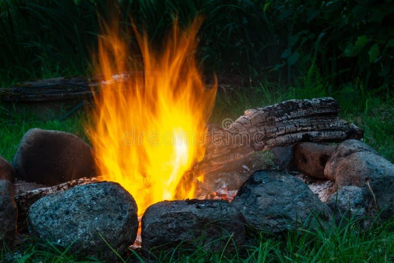 森林在壁炉,温暖,热,火烧 野营在nat 库存照片