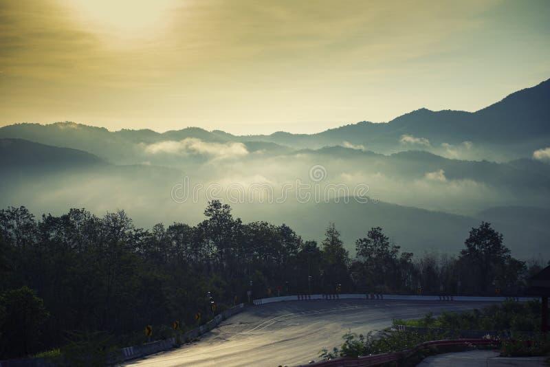 森林在山的薄雾雾与下坡曲线的路-剧烈的与早晨和木树的曲线美丽的天空云彩 免版税库存照片